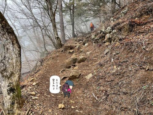 表三ツ峠コースをひたすら登る1