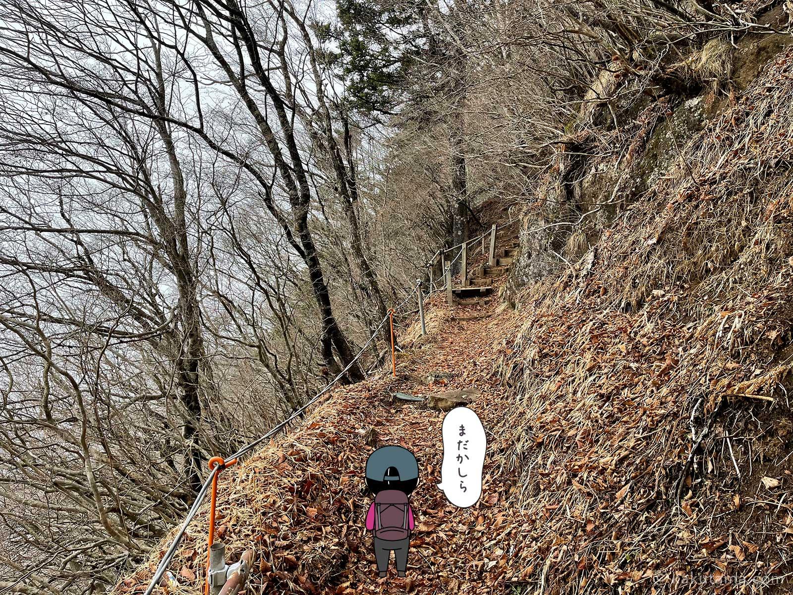 三ツ峠山荘方面へ進む4