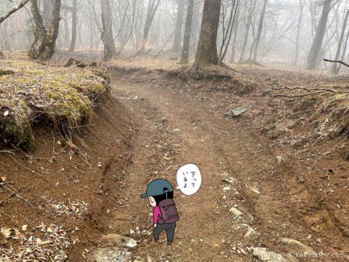三ツ峠山から下る