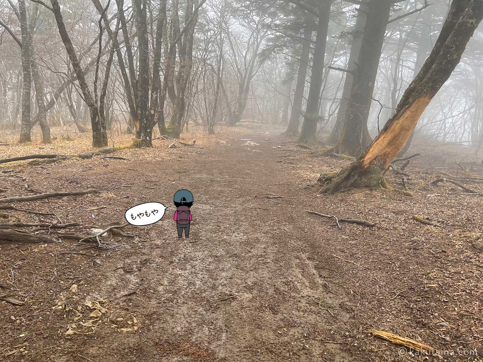 ガスりはじめた登山道