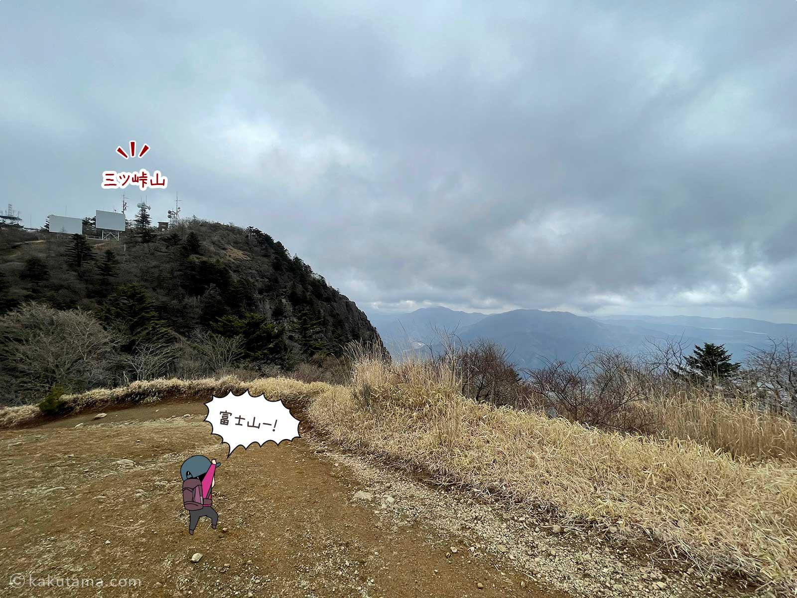 三ツ峠山を見上げる