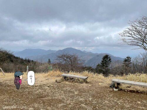 三ツ峠山エリアからの眺め
