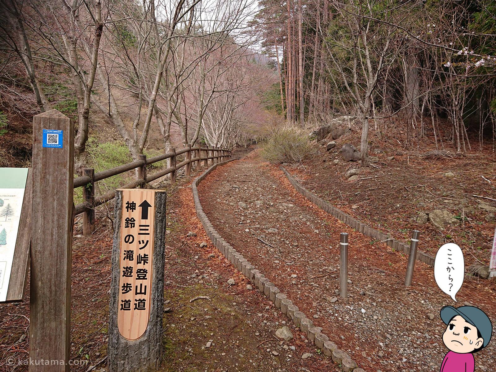 三ツ峠さくら公園からの登山口は?