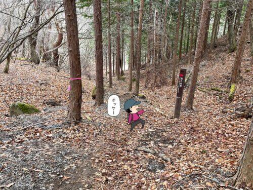 母の白滝への道標