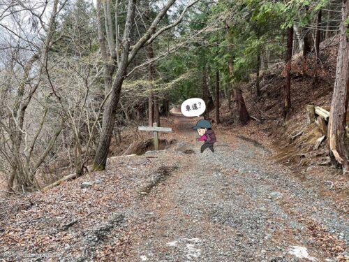 再び登山道へ