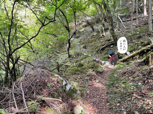 大岳鍾乳洞コースを登る