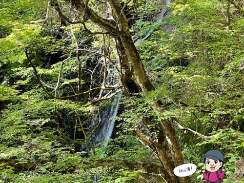 大滝を見る