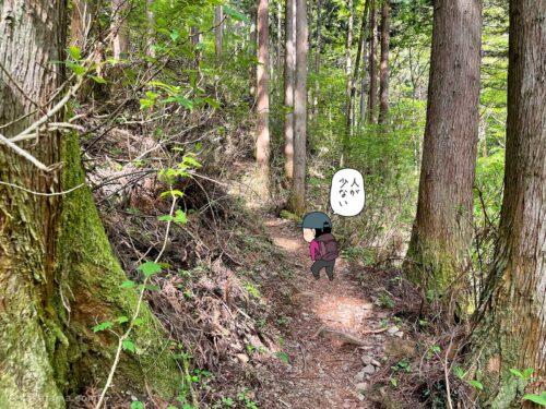 大岳鍾乳洞コースを登る2