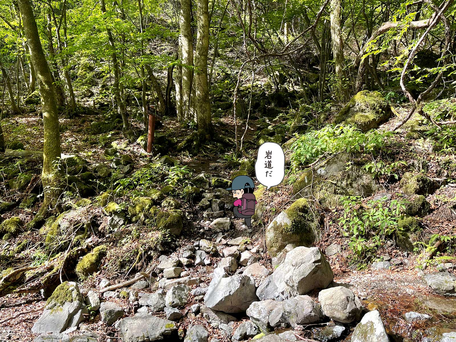 大岳鍾乳洞コースを登る6