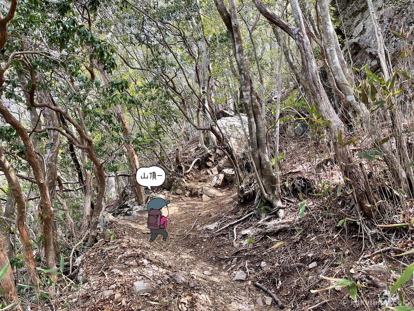 大岳山方向最後の登り2