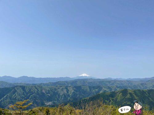 大岳山山頂から見る富士山