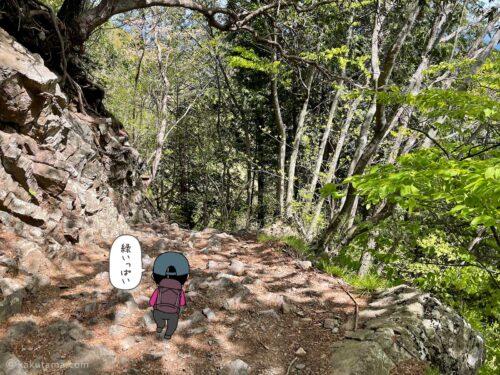 なだらかな登山道