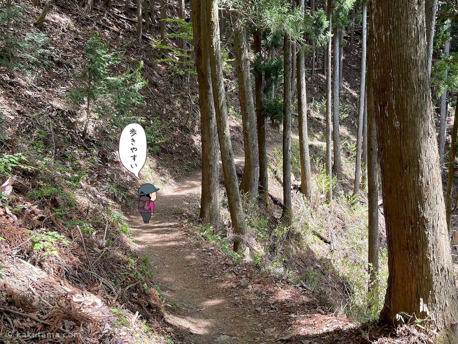 なだらかな登山道を進む2