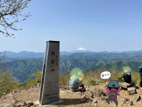 大岳山から見た富士山