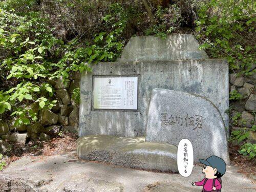 長谷川恒男の石