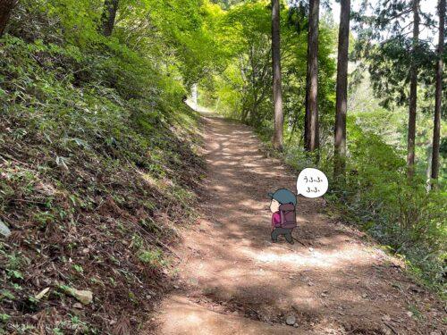 緩やかな上り道3