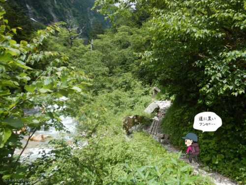フンが落ちている登山道