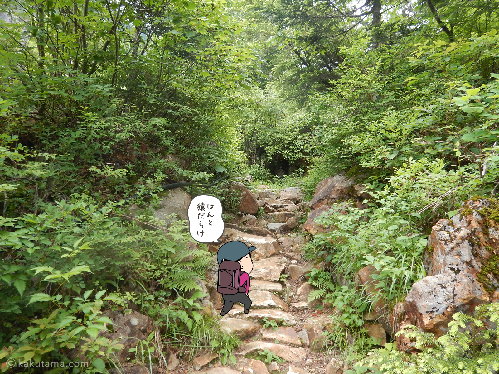 ババ平へ向かってひたすら登る2