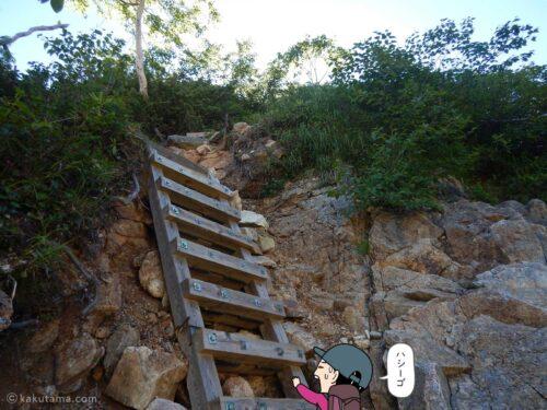 ハシゴを登る