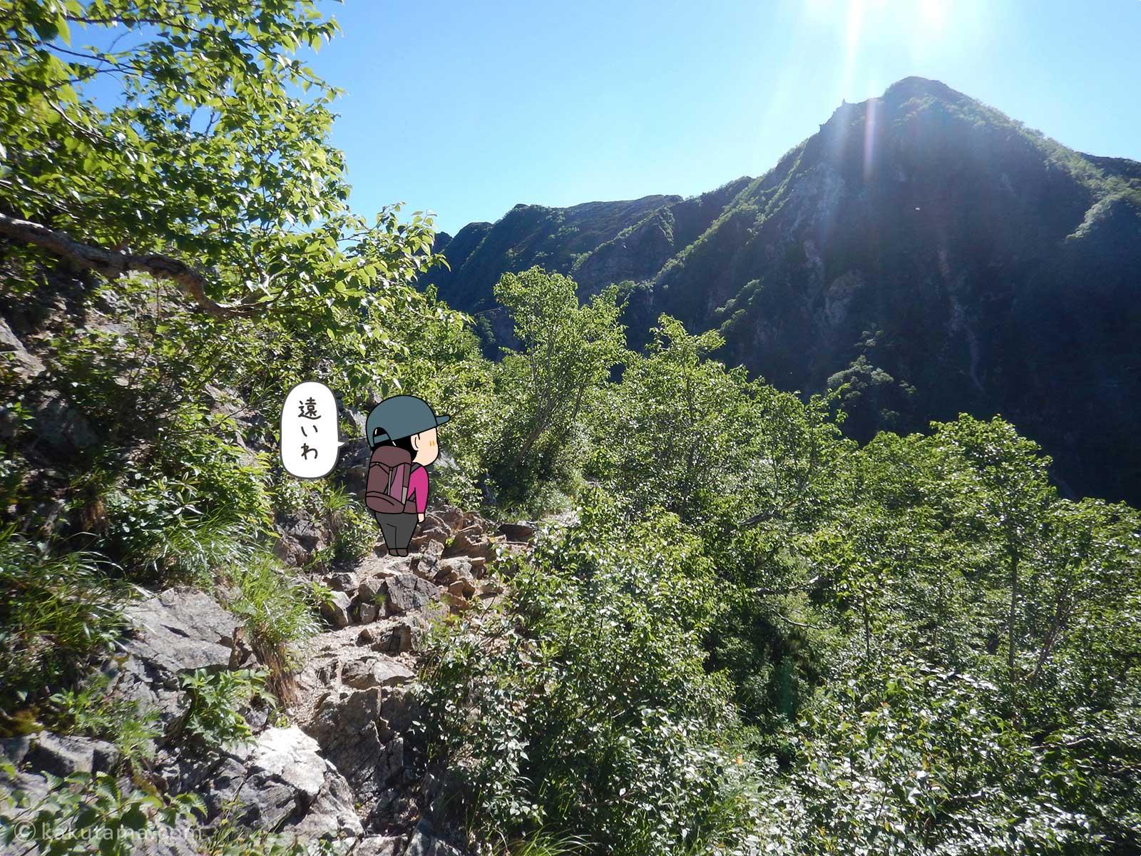 見晴らしがよい稜線に出た