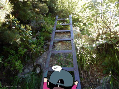 ハシゴを登り