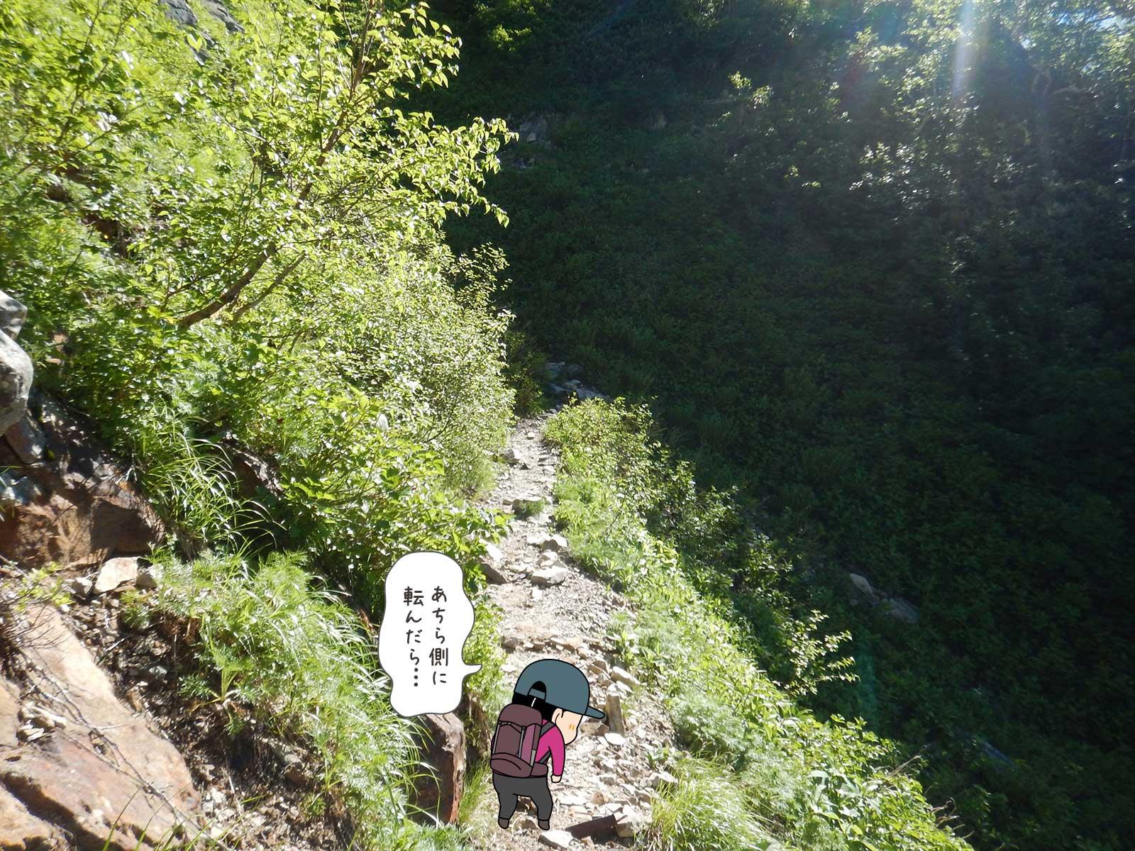 樹林帯を歩く2
