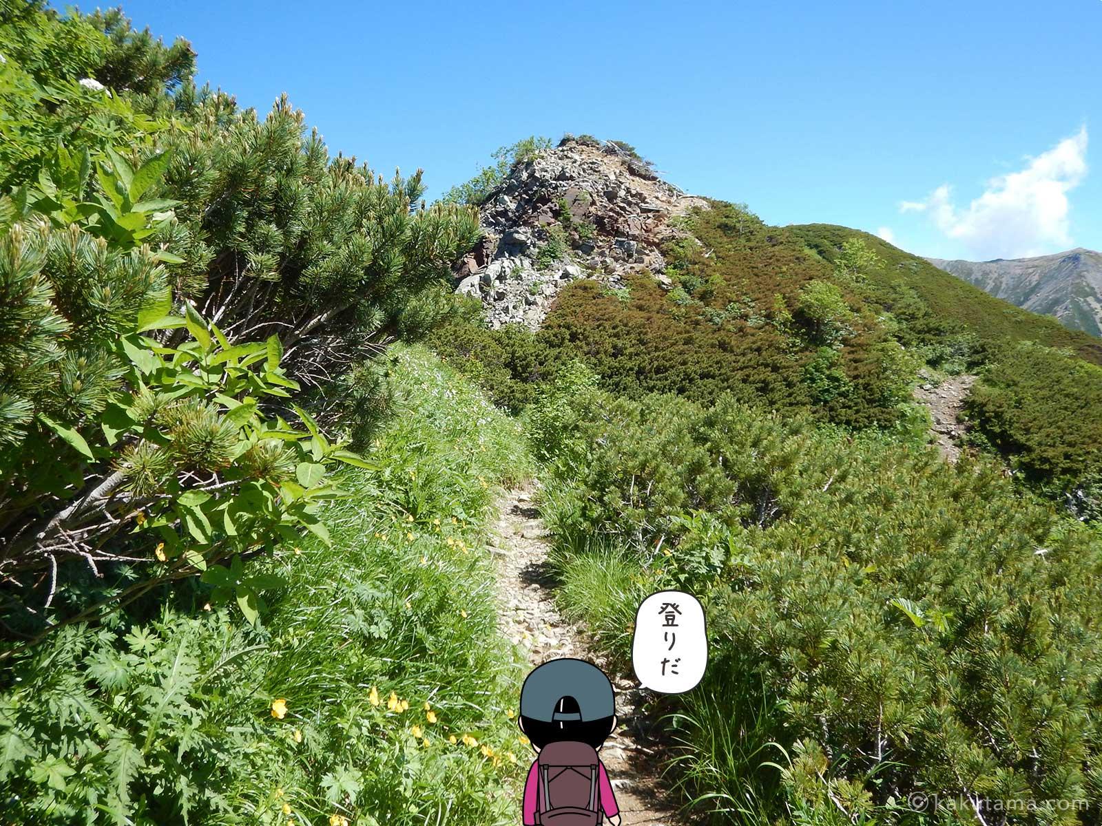 行く手に登りの岩場が見える