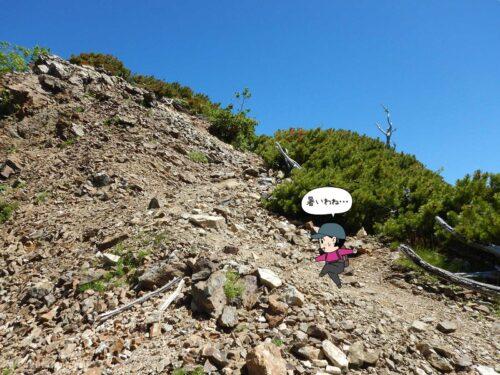 登山道を登る