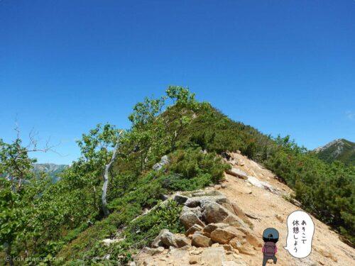 巻道を歩かずピークを登る