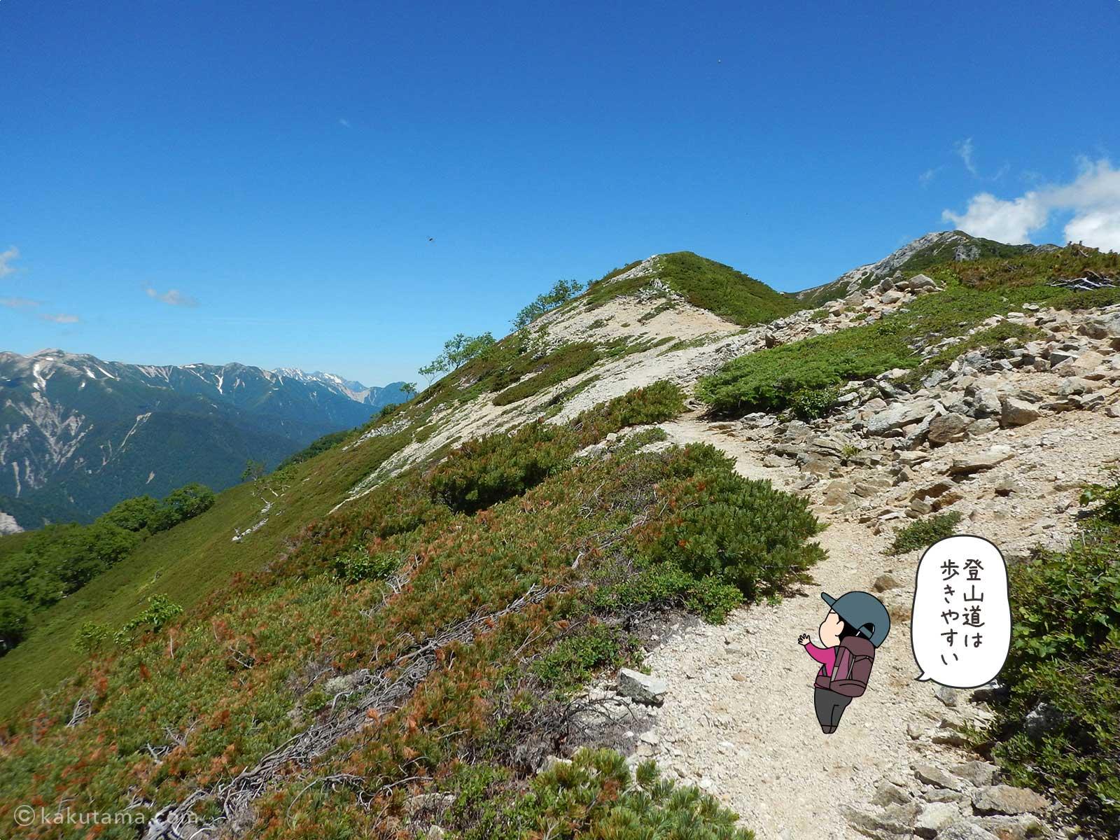 これから登る山の稜線が見える