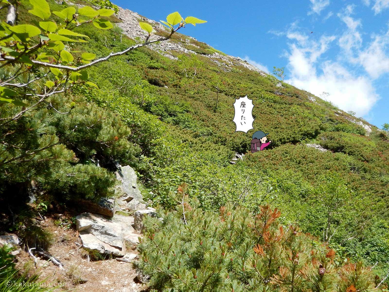 大天荘へ向かっての登り12