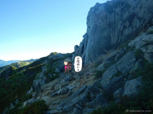 日陰の登山道が嬉しい