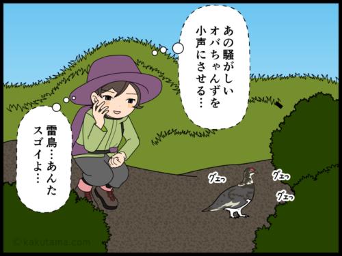 騒がしい中高年登山者も雷鳥の前では静かになる漫画