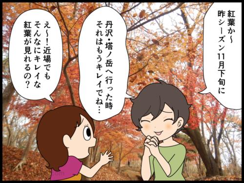 昨年の山の紅葉が素敵だったからと今年も同じ時期へ行ったがイマイチな紅葉にがっかりする登山者の漫画